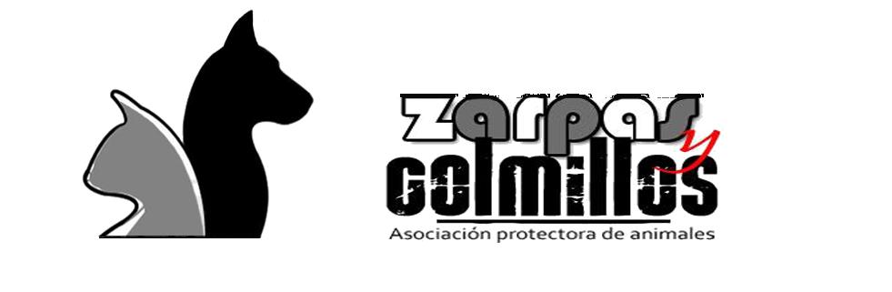 Zarpas y Colmillos