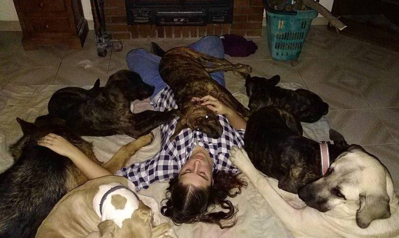 Peludos de la semana: Harry y Ginny, dos alfombras
