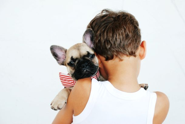 Guía para adoptantes y acogidas IV: Perros y niños