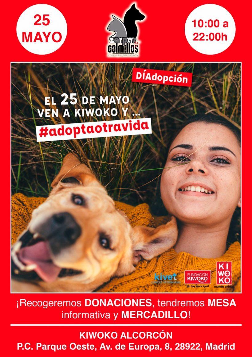 Visítanos y conoce a nuestros perretes en Kiwoko de Alcorcón