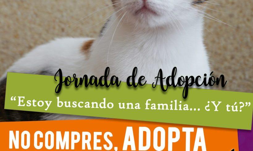 Jornada de adopción en Zarpas