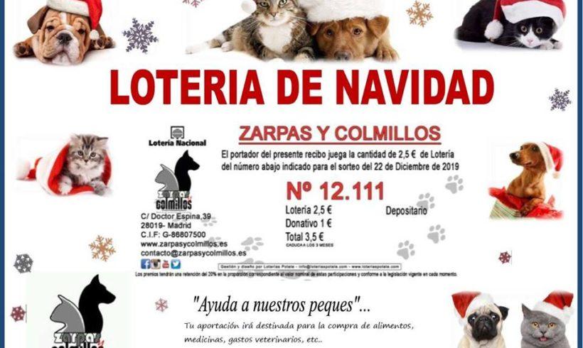 12.111, la lotería de Navidad de Zarpas ¡No lo dejes escapar, que toca!