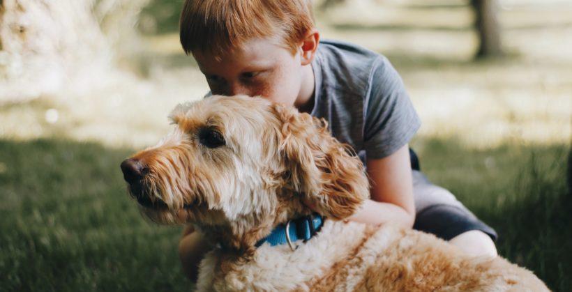 La asignatura de Protección Animal nace en un colegio de Granada