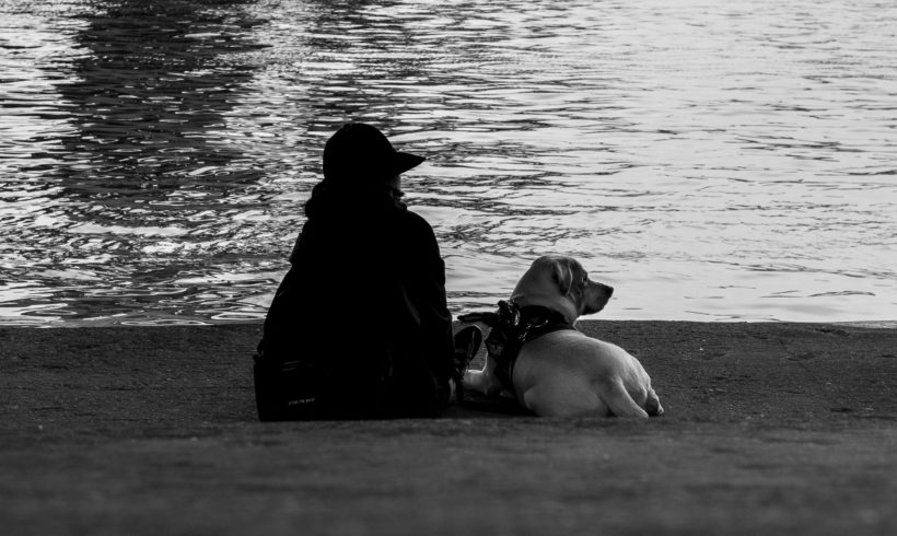 "Londres, ciudad ""dog friendly"""
