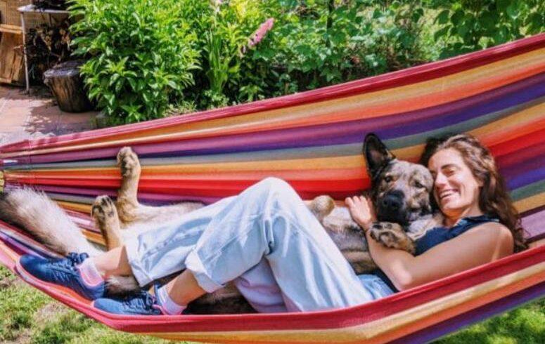 ¡¡¡Cinco gatos y un perrete adoptados!!!