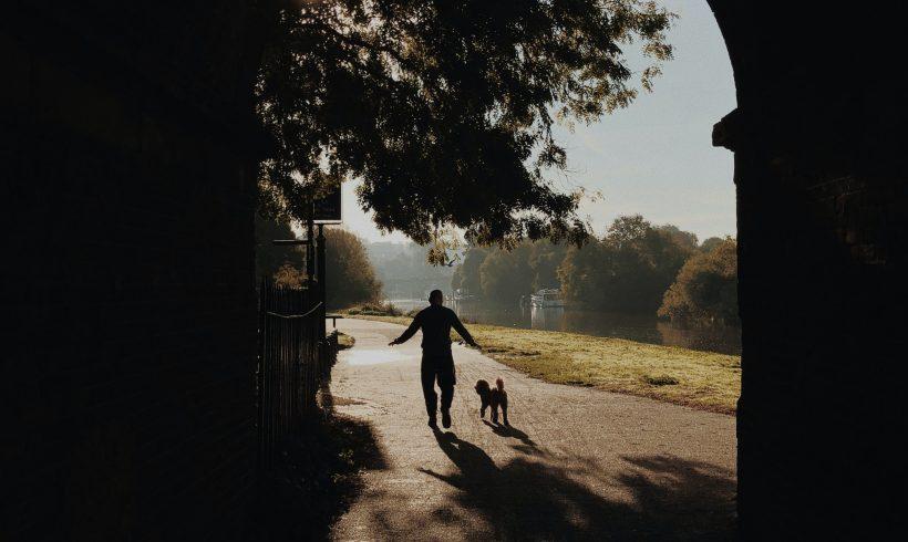 Rutas para hacer senderismo con mi perro en Madrid y alrededores. Parte I