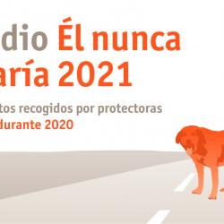 Los datos del abandono y adopción en España de 2020